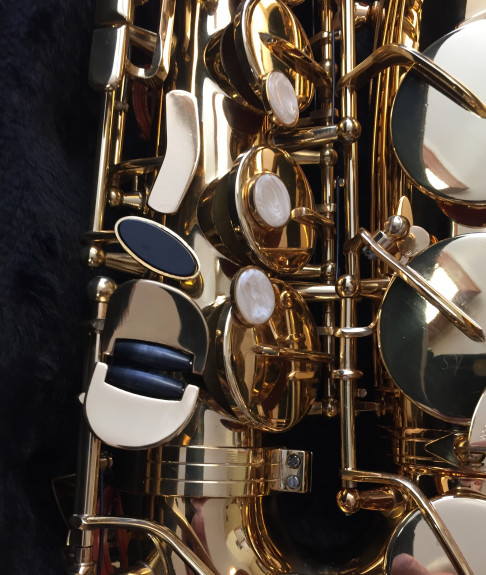 Ardsley Ltd Alto Sax 4